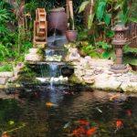 Záhradné jazierko – všetko čo potrebujete vedieť